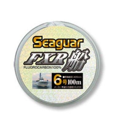 画像1: Seaguar・FXR船 100m